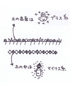 35p_テネモス25_26.jpg