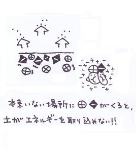 36p_テネモス27_27.jpg