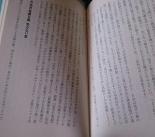 DSC_0407-1.jpg